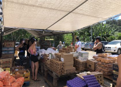 New Produce Program Supports North Shore Farmers and Families